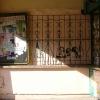 galeria_3813.JPG