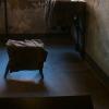 galeria_3945.JPG