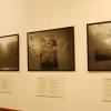 galeria_4853.JPG