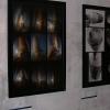 galeria_6108.JPG