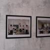 galeria_6113.JPG