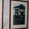 galeria_6121.JPG