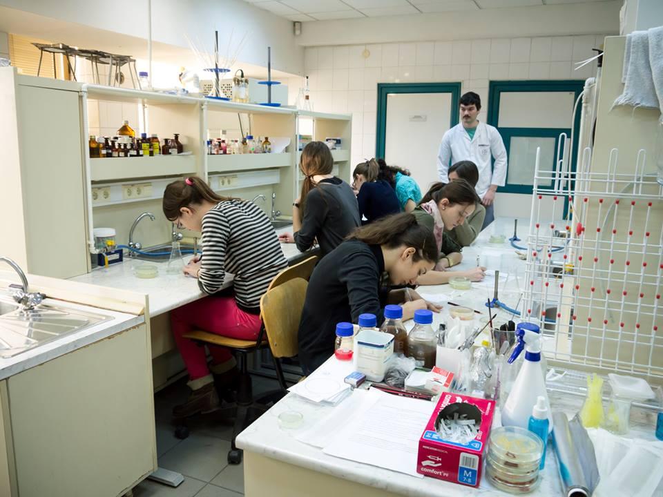 Fessünk mikrobákkal! Interaktív laboraktivitás a csíkszeredai Sapientián