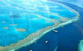 T�zmilli�rd doll�r menthetn� meg az ausztr�l Nagy-korallz�tonyt