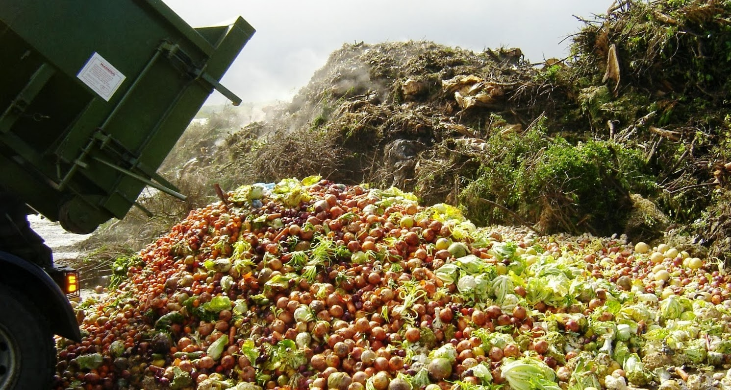 Módosítani kell az élelmiszerpazarlás elleni törvényt