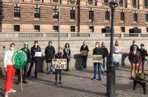 Maszkban sztrájkoltak ismét Thunbergék a svéd parlament elõtt
