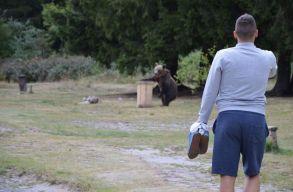 Medve kergette meg a magyar olimpikont a Szent Anna-tónál