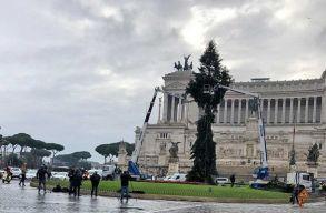 Elég rondán néz ki Róma karácsonyfája, de állítólag kikupálják majd