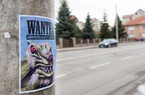 Kiszabadult a sárkány által elrabolt sepsiszentgyörgyi nõ