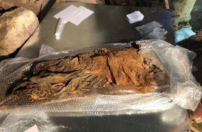 Újabb fényképeket tettek közzé a Bánffyhunyadon feltárt kriptáról