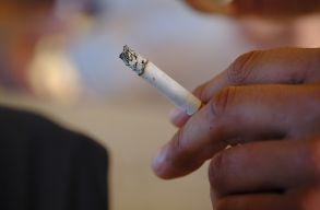 WHO: elõször csökkent világszerte a dohányos férfiak száma