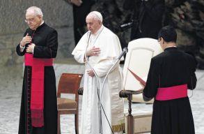 Ferenc pápa: a homoszexuális embereknek joguk kell legyen ahhoz, hogy családban éljenek