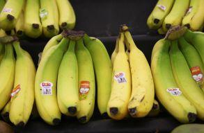 Elképesztõ mennyiségû banánt dobnak ki a britek naponta