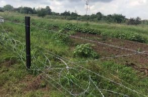 Áll már a szögesdrót kerítés a bolgár-román határon