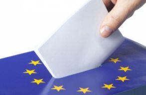 Lehet, hogy a kárpátaljai és vajdasági magyar állampolgárok is szavazhatnak majd a májusi EP-választáson