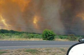 Vadtûz pusztít Hawaii egyik szigetén