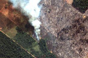 Bolsonaro engedélyezte, hogy a hadsereg is közremûködjön az esõerdõtüzek megfékezésében