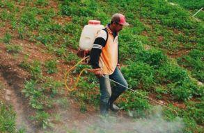 Újabb rovarirtó szert tiltottak be az EU hatóságai