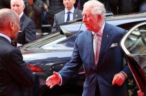 Károly herceg is elkapta a koronavírust