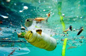 A világ legtávolabbi vizeiben is magas a mûanyaghulladékok aránya