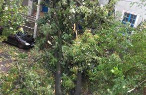 Hatalmas pusztításokat végzett a vasárnapi vihar Szilágy megyében