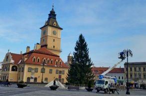 28 méter magas fenyõ lesz a brassói karácsonyfa