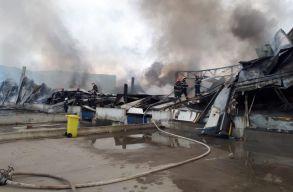 Sikerült teljesen eloltani a gyulafehérvári fûszergyárban kiütött tüzet