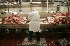 Lefoglaltak 1300 kg Magyarországról származó húsárut Temes megyében