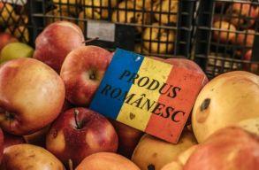 Idén 700 ezer lejt különített el a kolozsvári önkormányzat az Élelmiszerek programra