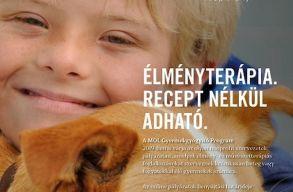 Idén is meghirdették a MOL Gyermekgyógyító programot