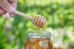 Január elsejétõl havonta kapnak egy befõttesüveg mézet az iskolások