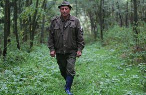 Szolgálati fegyverrel szerelnék fel az erdõk õrzését ellátó erdészeket