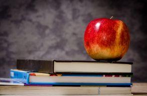 Döntõházként fogadta el a szenátus az RMDSZ oktatási tervezetét