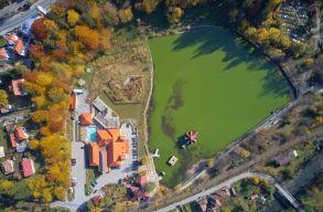 A ország vezetõihez fordult Tusnádfürdõ önkormányzata a medveprobléma miatt