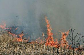 A tarlótüzek miatt 55 hektárnyi száraz növényzet égett le a hétvégén Hargita megyében