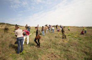 Újjáélesztenék Kolozsvár egyik elhagyatott zöldövezetét