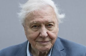 David Attenboroughról nevezték el Nagy-Britannia új sarkkutató hajóját