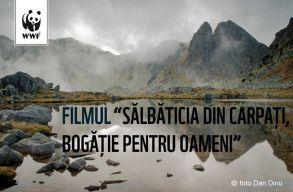 A Kárpátok vadonjairól készített filmet a WWF Románia