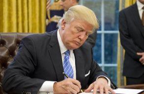 Azonnali hatállyal felfüggesztette az amerikai bíróság Trump beutazási tiltórendszerét