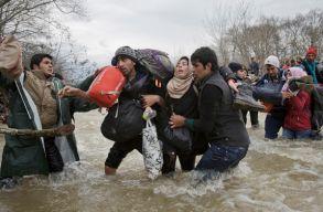 Román és magyar fotós is nyert a World Press Photo sajtófotó-pályázaton