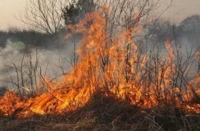 Lustaságból égetjük fel a természetet: tévhit, hogy a tarlóégetés bizonyos esetekben legális