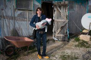 Kivizsgáltatja a kormány az Olaszországban kizsákmányolt román vendégmunkások ügyét
