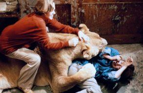 A világ legveszélyesebb filmjét hozza el a TIFF Bonchidára