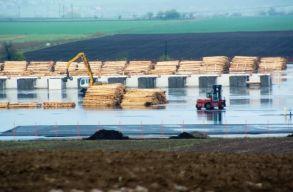 Csökkent az illegális fakitermelés Romániában