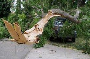 11 megyében kellett beavatkoznia a katasztrófavédelemnek a rossz idõ miatt