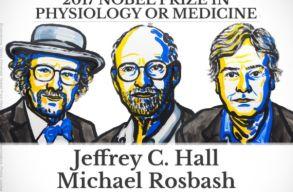 A biológiai óra mechanizmusainak a felfedezéséért járt az orvosi Nobel-díj
