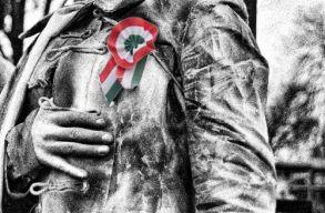 Dragnea: nem szavazzuk meg a március 15-ös tervezetet a jelenlegi formájában