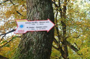Kijelölték a turistaútvonalakat a Bodok-hegységben