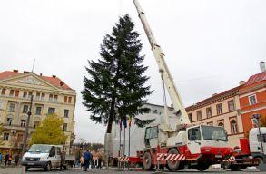 Felállították a vásári karácsonyfát Kolozsváron