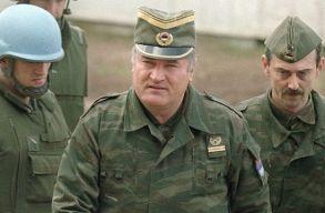 Életfogytiglant kapott Ratko Mladic